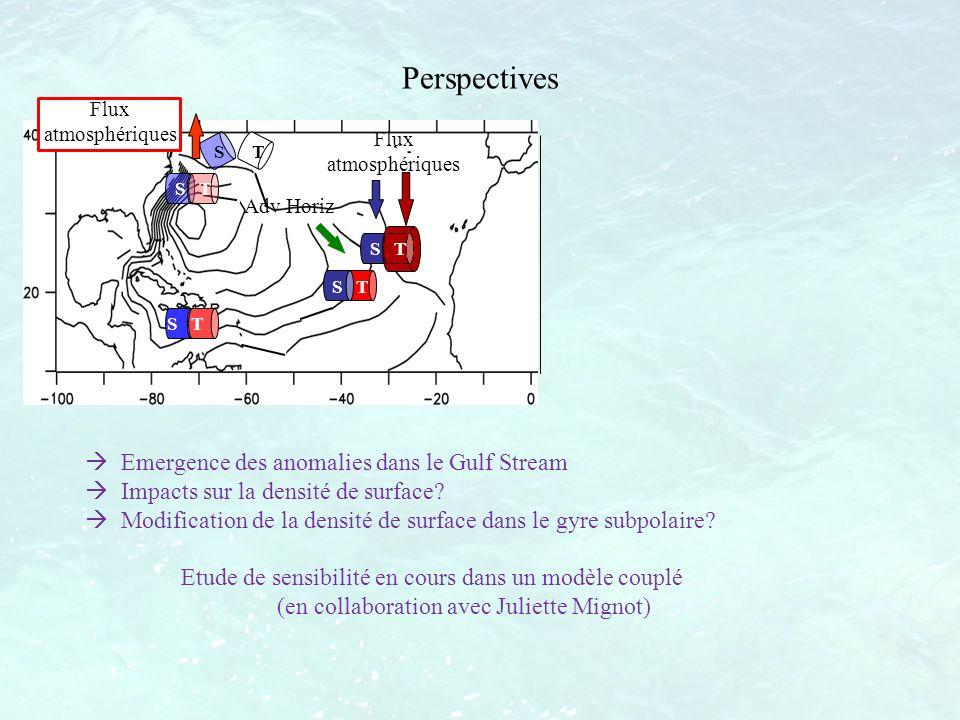 Flux atmosphériques S T Adv Horiz S T Perspectives Flux atmosphériques S T Emergence des anomalies dans le Gulf Stream Impacts sur la densité de surfa