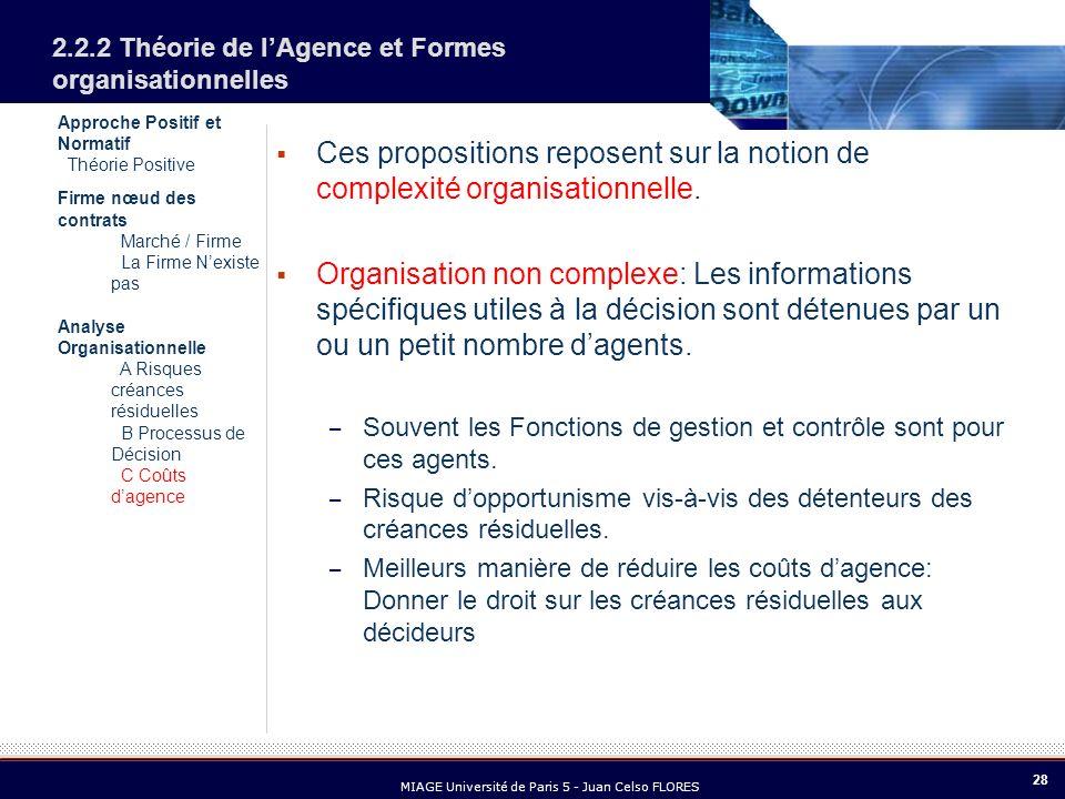 28 MIAGE Université de Paris 5 - Juan Celso FLORES Approche Positif et Normatif Théorie Positive Firme nœud des contrats Marché / Firme La Firme Nexis
