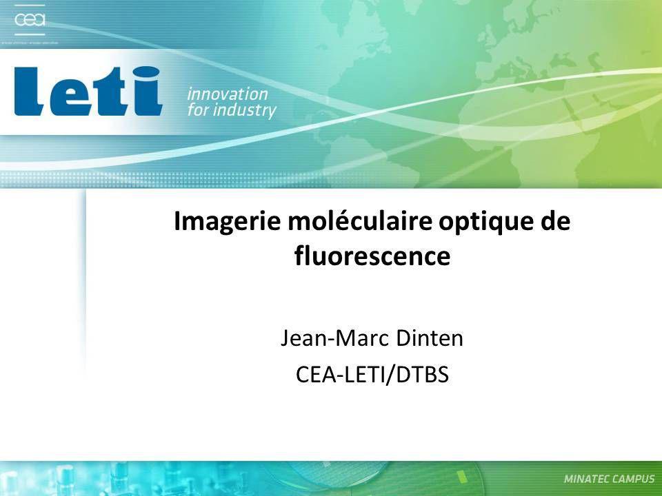 Imagerie moléculaire optique de fluorescence Jean-Marc Dinten CEA-LETI/DTBS