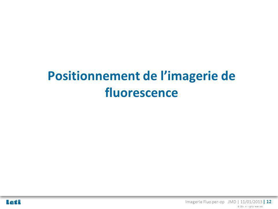 © CEA. All rights reserved Imagerie Fluo per-op JMD | 11/01/2013 | 12 Positionnement de limagerie de fluorescence