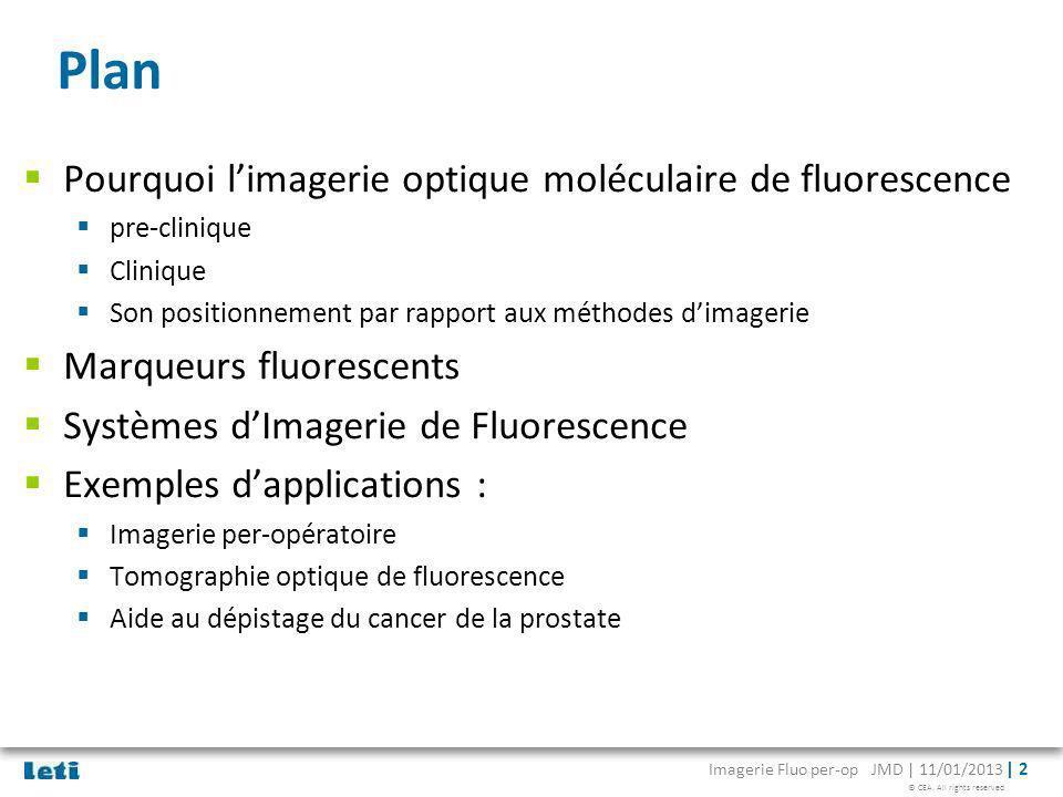 © CEA. All rights reserved Imagerie Fluo per-op JMD | 11/01/2013 | 2 Plan Pourquoi limagerie optique moléculaire de fluorescence pre-clinique Clinique