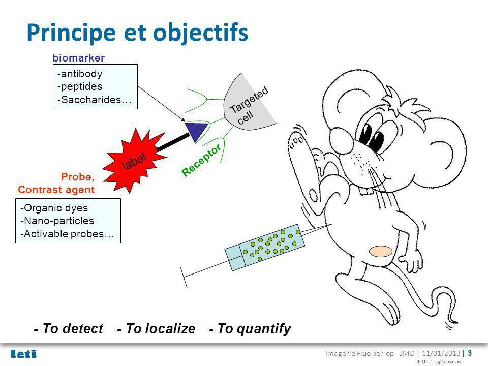 © CEA. All rights reserved Imagerie Fluo per-op JMD | 11/01/2013 | 3 Principe et objectifs label biomarker Receptor -antibody -peptides -Saccharides…