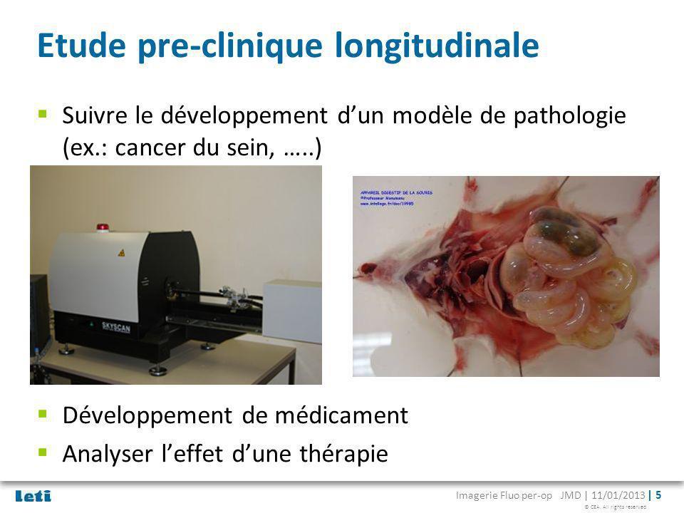 © CEA. All rights reserved Imagerie Fluo per-op JMD | 11/01/2013 | 5 Etude pre-clinique longitudinale Suivre le développement dun modèle de pathologie