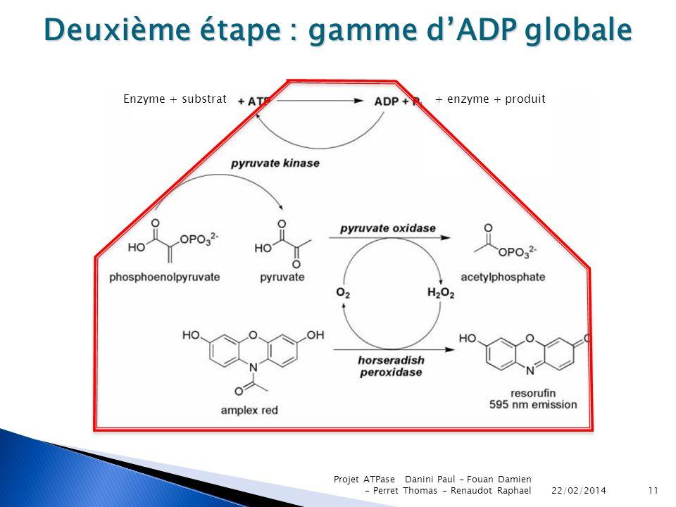 22/02/2014 Projet ATPase Danini Paul - Fouan Damien - Perret Thomas - Renaudot Raphael11 Deuxième étape : gamme dADP globale Enzyme + substrat+ enzyme