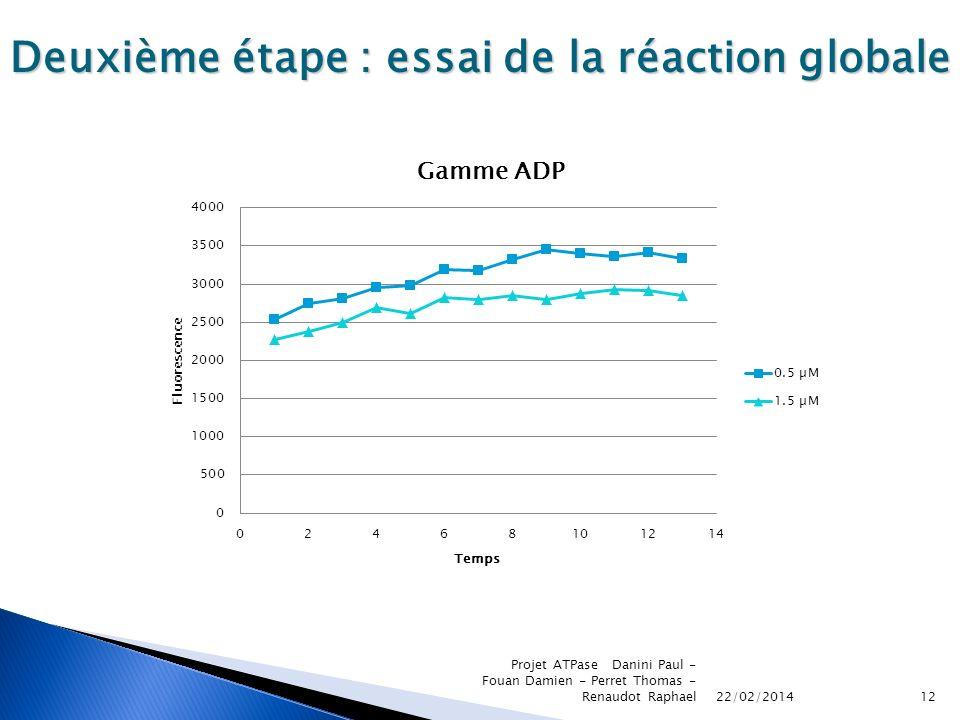 22/02/2014 Projet ATPase Danini Paul - Fouan Damien - Perret Thomas - Renaudot Raphael12 Deuxième étape : essai de la réaction globale