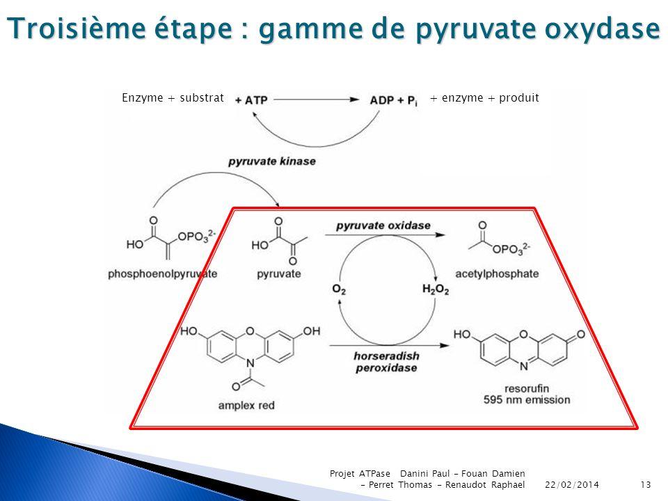 22/02/2014 Projet ATPase Danini Paul - Fouan Damien - Perret Thomas - Renaudot Raphael13 Troisième étape : gamme de pyruvate oxydase Enzyme + substrat