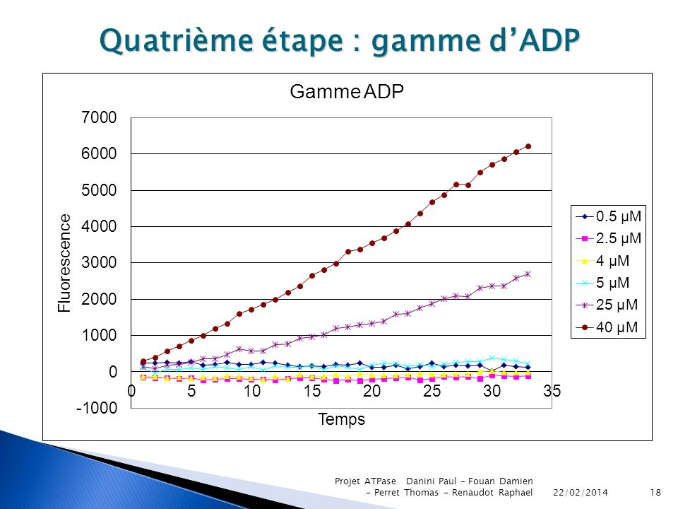 22/02/2014 Projet ATPase Danini Paul - Fouan Damien - Perret Thomas - Renaudot Raphael18 Quatrième étape : gamme dADP