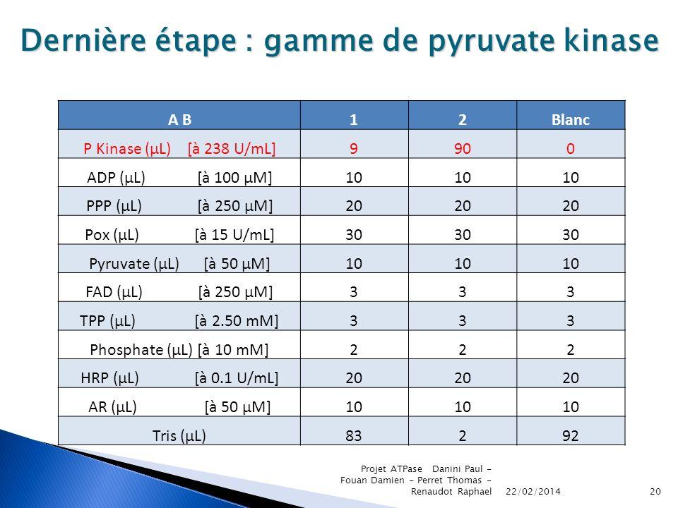 22/02/2014 Projet ATPase Danini Paul - Fouan Damien - Perret Thomas - Renaudot Raphael20 Dernière étape : gamme de pyruvate kinase A B12Blanc P Kinase