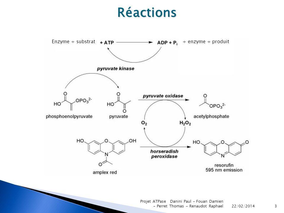 22/02/2014 Projet ATPase Danini Paul - Fouan Damien - Perret Thomas - Renaudot Raphael3 Réactions Enzyme + substrat+ enzyme + produit