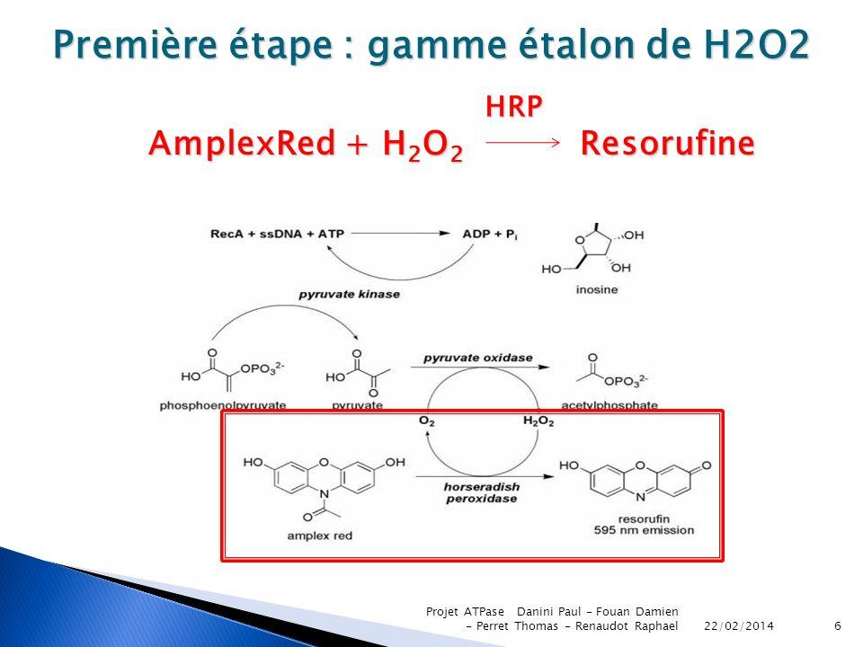 22/02/2014 Projet ATPase Danini Paul - Fouan Damien - Perret Thomas - Renaudot Raphael6 Première étape : gamme étalon de H2O2 AmplexRed + H 2 O 2 Reso