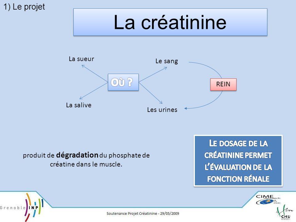 15 créatine + H 2 O créatine-amidinohydrolase sarcosine + urée (créatinase) Solution de créatinase (μL) Solution de sarcosine (μL) Tableau croisé avec concentration=3 U/mol Sarcosine : 50 μL à 1,53 U/mol Créatine : 50 μL à 3 U/mol Solution de sarcosine (μL) 020406080100 0Contrôle négatif 20coloration 40optimum 602 nde oxydation 80 100 Propriétés de lenzyme : - Transforme 1μmol de créatine / minute - Enzyme à diluer à 2,0-3,0 U/mol II- Les réactionsc La deuxième réaction
