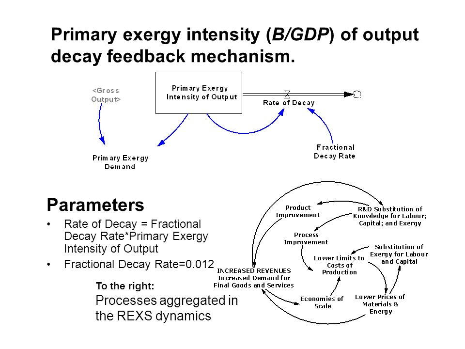 Primary exergy intensity (B/GDP) of output decay feedback mechanism.
