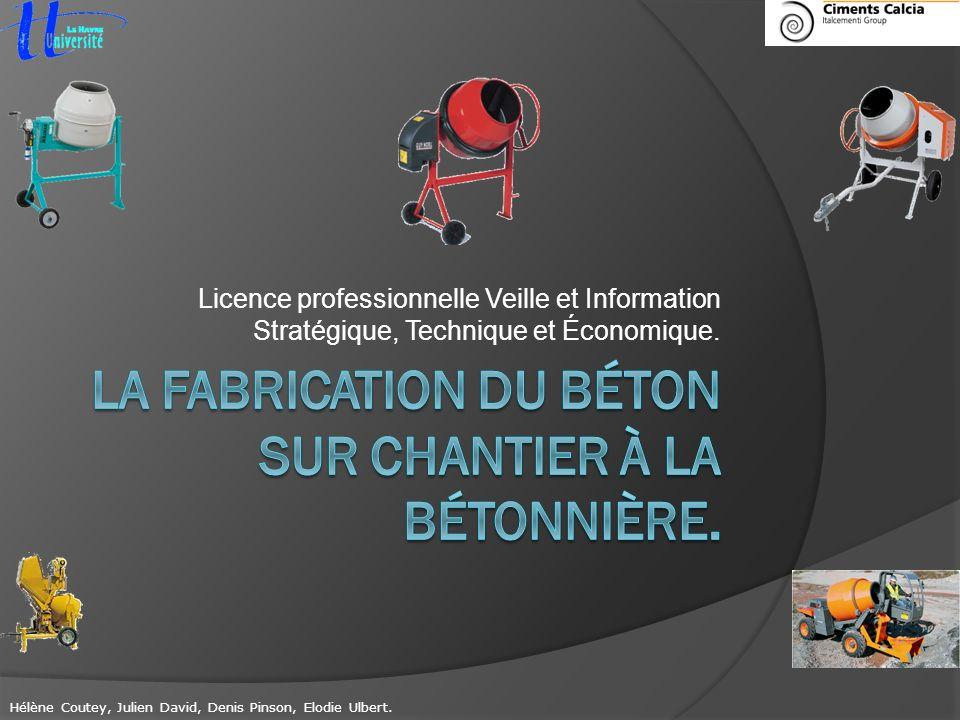 Licence professionnelle Veille et Information Stratégique, Technique et Économique. Hélène Coutey, Julien David, Denis Pinson, Elodie Ulbert.