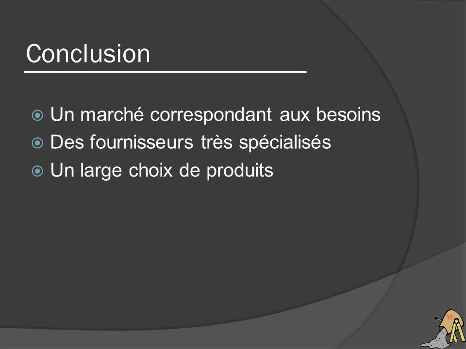 Conclusion 18 Un marché correspondant aux besoins Des fournisseurs très spécialisés Un large choix de produits