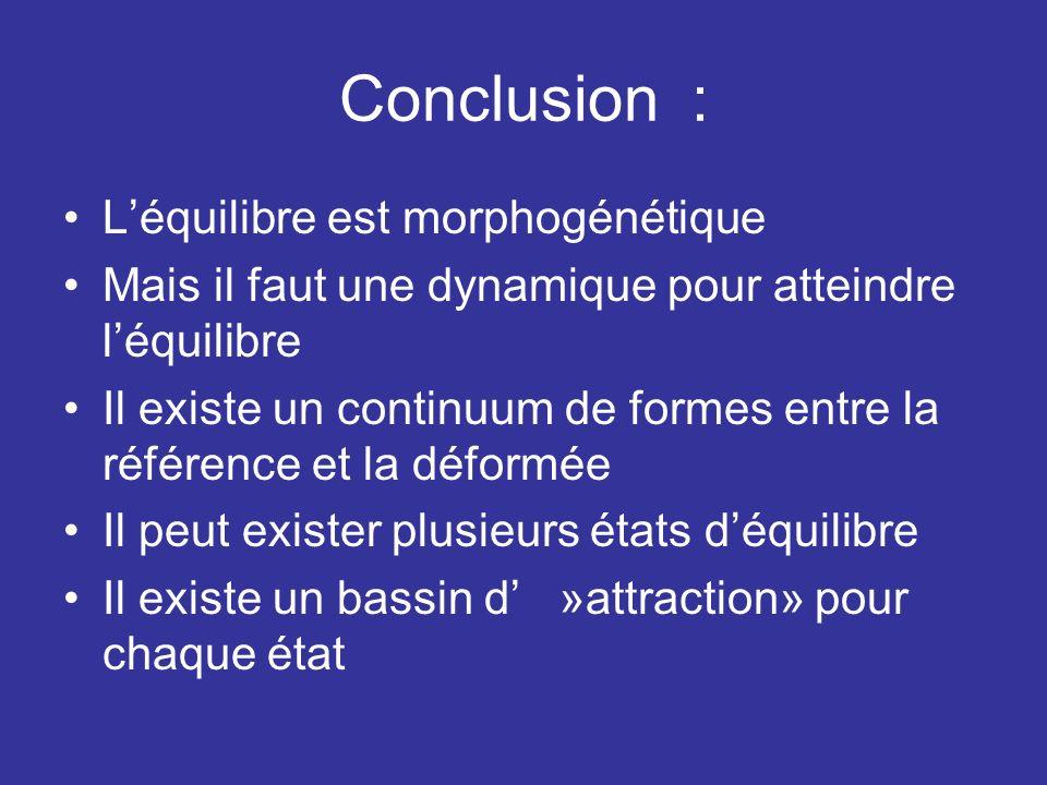 Conclusion : Léquilibre est morphogénétique Mais il faut une dynamique pour atteindre léquilibre Il existe un continuum de formes entre la référence e