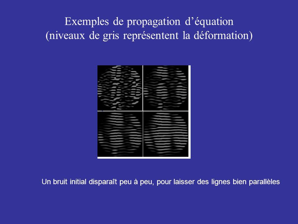 Exemples de propagation déquation (niveaux de gris représentent la déformation) Un bruit initial disparaît peu à peu, pour laisser des lignes bien par