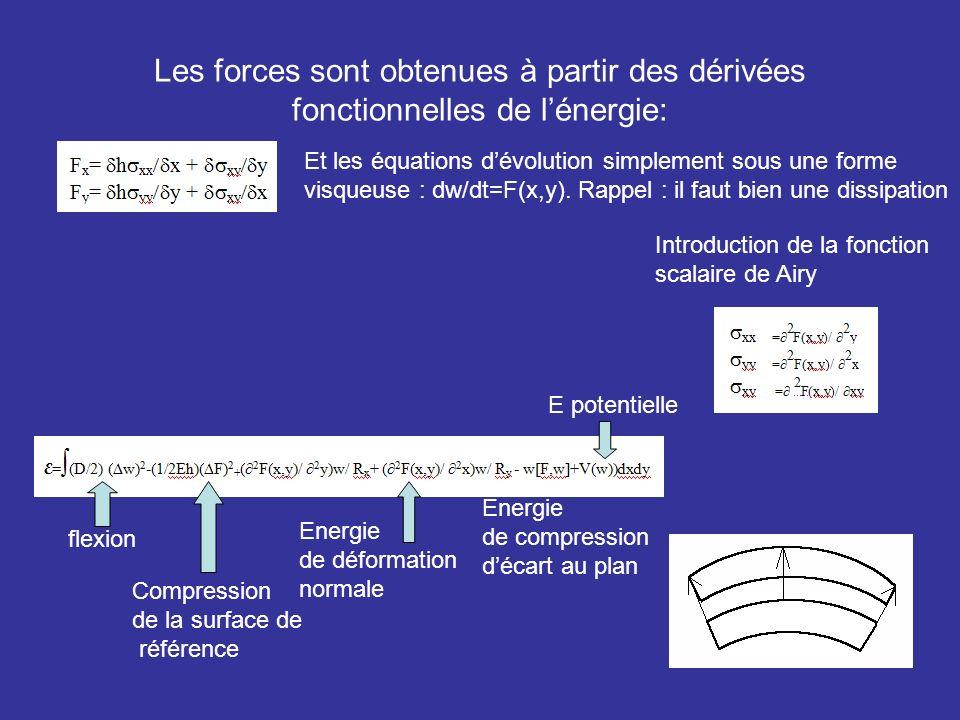 Les forces sont obtenues à partir des dérivées fonctionnelles de lénergie: Introduction de la fonction scalaire de Airy Et les équations dévolution si