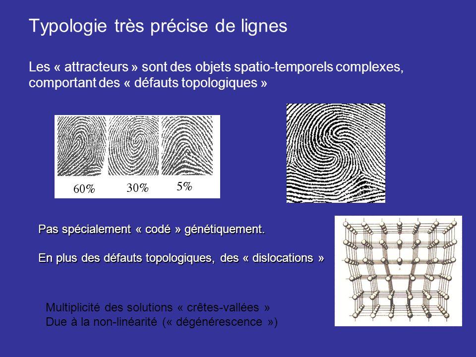 Typologie très précise de lignes Les « attracteurs » sont des objets spatio-temporels complexes, comportant des « défauts topologiques » Pas spécialem