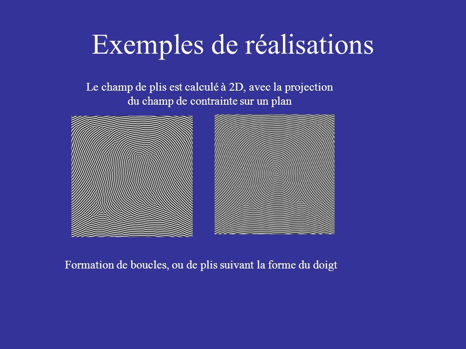 Le champ de plis est calculé à 2D, avec la projection du champ de contrainte sur un plan Formation de boucles, ou de plis suivant la forme du doigt Ex