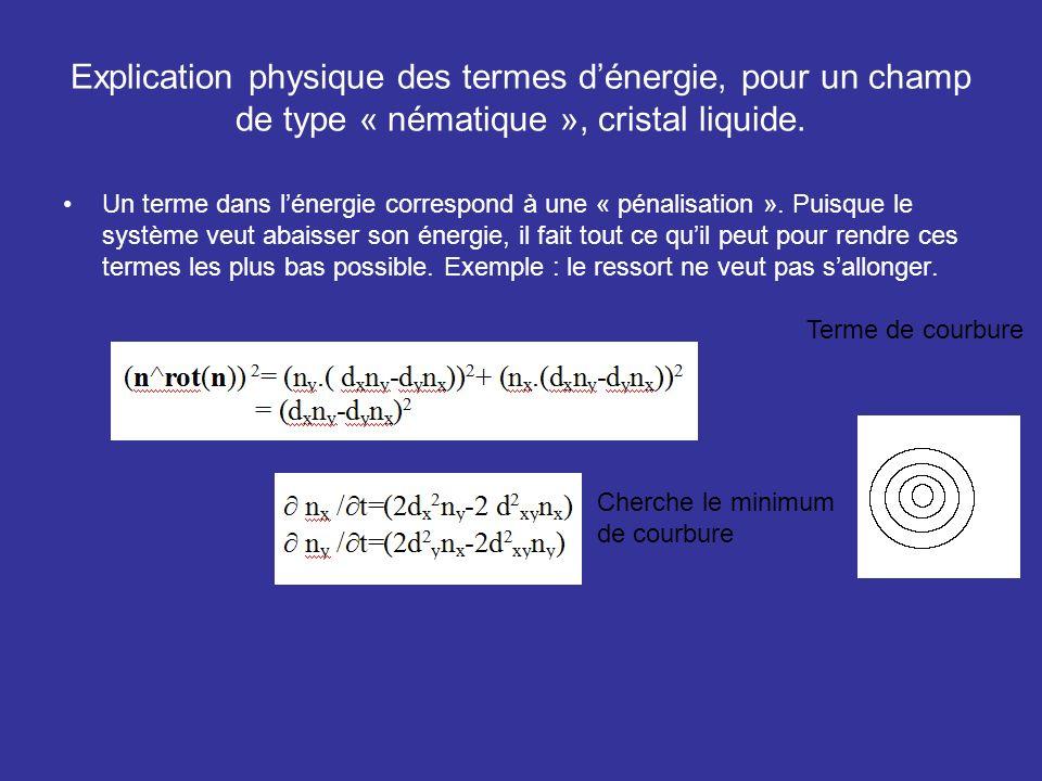Explication physique des termes dénergie, pour un champ de type « nématique », cristal liquide. Un terme dans lénergie correspond à une « pénalisation