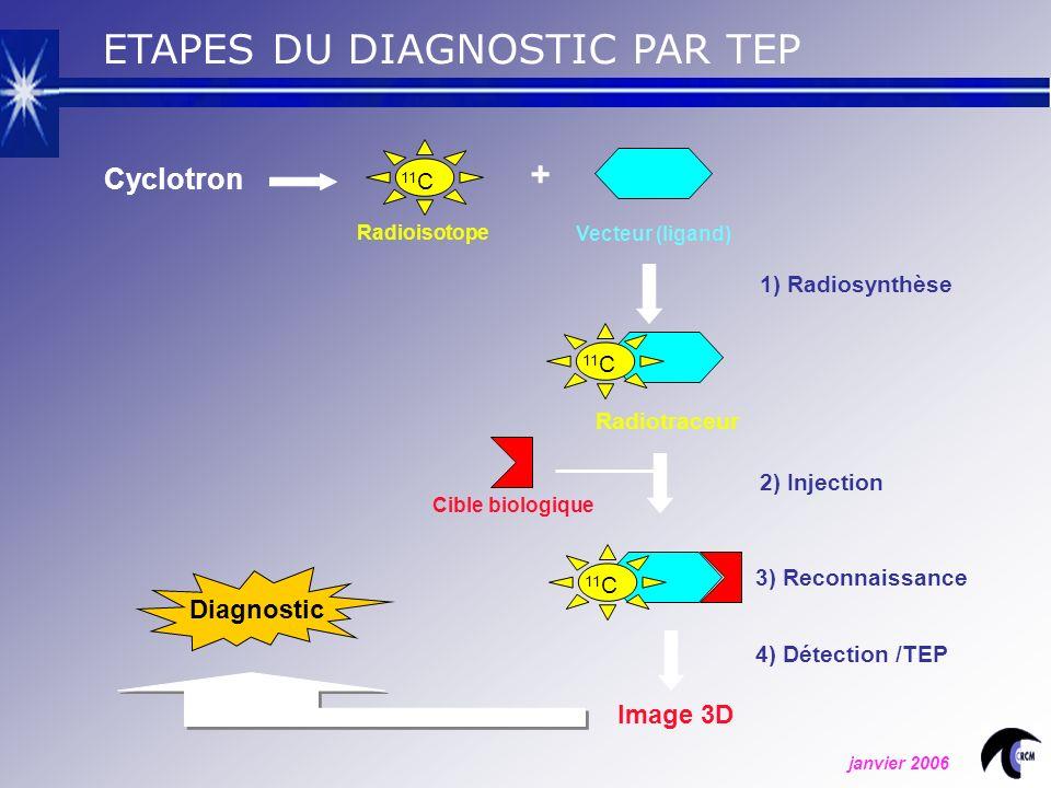 1) Radiosynthèse 3) Reconnaissance 11 C Cyclotron 11 C + Radioisotope Vecteur (ligand) Radiotraceur 2) Injection Cible biologique Image 3D 4) Détection /TEP Diagnostic ETAPES DU DIAGNOSTIC PAR TEP janvier 2006