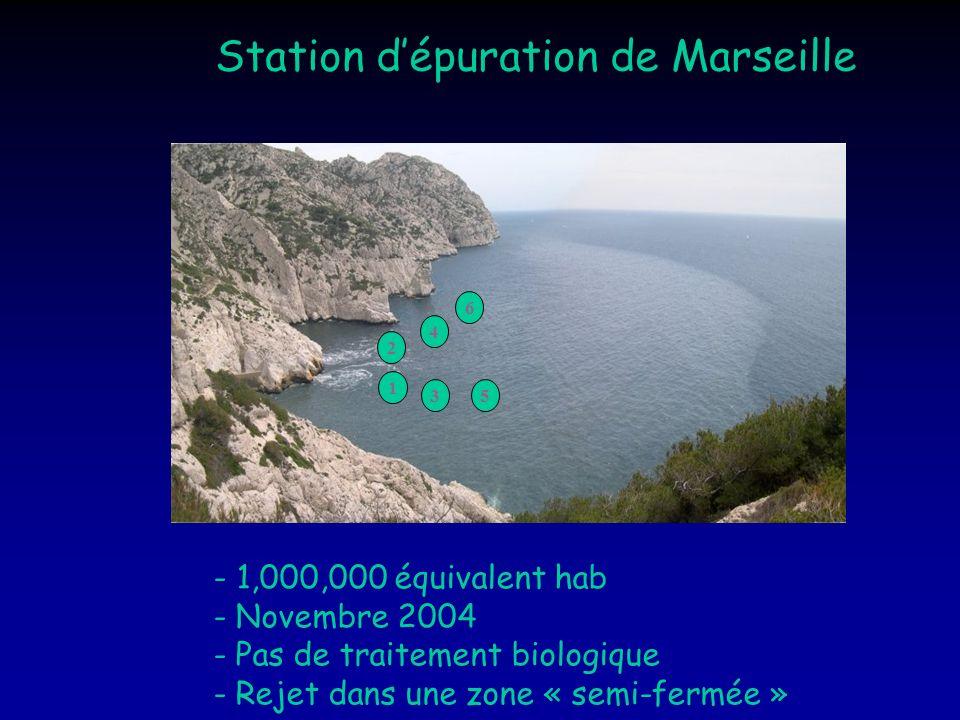 1 3 2 5 4 6 Station dépuration de Marseille - 1,000,000 équivalent hab - Novembre 2004 - Pas de traitement biologique - Rejet dans une zone « semi-fer