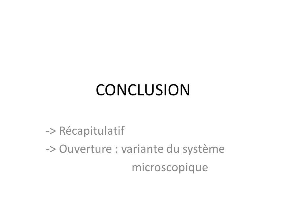 CONCLUSION -> Récapitulatif -> Ouverture : variante du système microscopique
