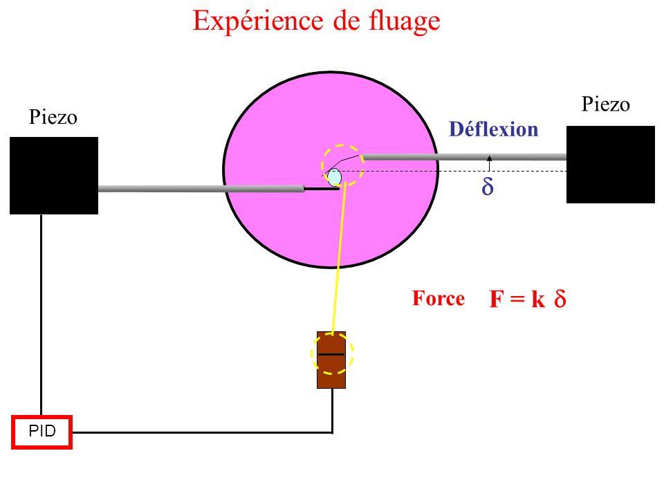 Piezo PID Déflexion F = k Force Expérience de fluage