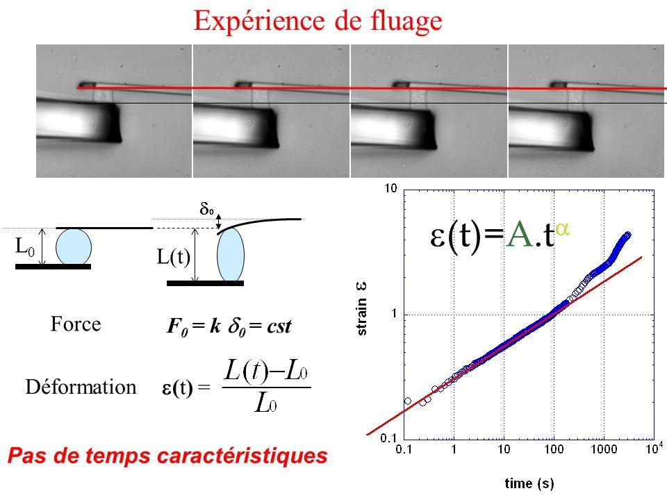 L0L0 L(t) (t) = F 0 = k 0 = cst Force Déformation (t)=A.t Pas de temps caractéristiques Expérience de fluage