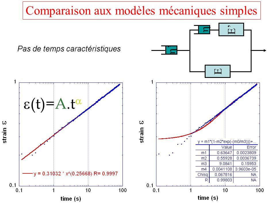 Comparaison aux modèles mécaniques simples E E Pas de temps caractéristiques (t)=A.t