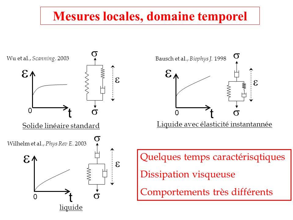 t 0 Solide linéaire standard t 0 Liquide avec élasticité instantannée t 0 liquide Bausch et al., Biophys J. 1998 Wilhelm et al., Phys Rev E. 2003 Wu e