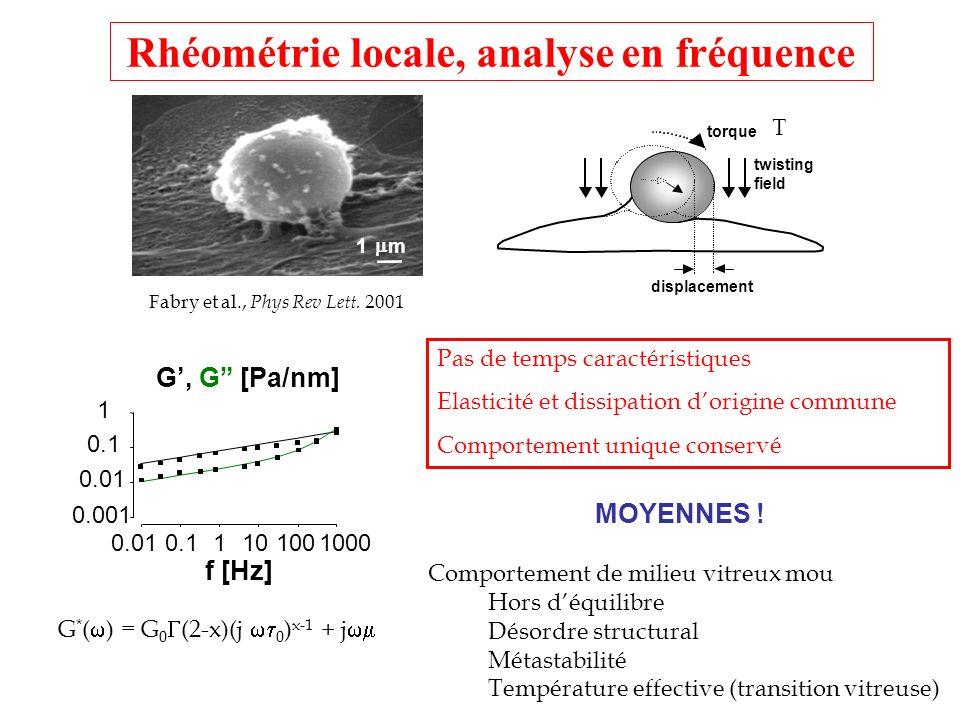 Principe de létirement uniaxial Microplaque flexible (ressort de raideur k) Microplaque rigide Thoumine et Ott, J.