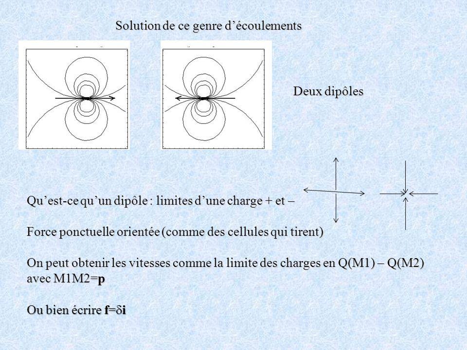 Deux dipôles Quest-ce quun dipôle : limites dune charge + et – Force ponctuelle orientée (comme des cellules qui tirent) On peut obtenir les vitesses