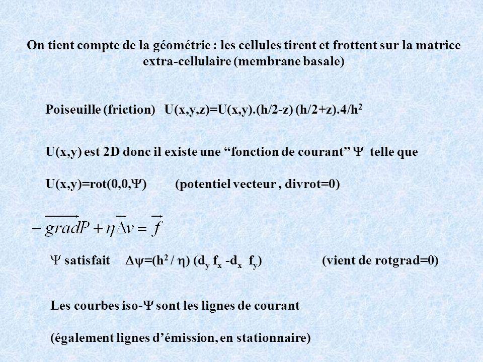 Poiseuille (friction) U(x,y,z)=U(x,y).(h/2-z) (h/2+z).4/h 2 U(x,y) est 2D donc il existe une fonction de courant telle que U(x,y)=rot(0,0, (potentiel