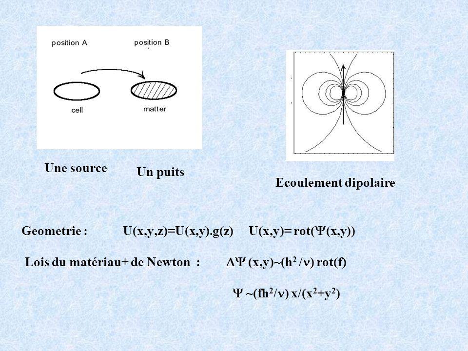 Geometrie : U(x,y,z)=U(x,y).g(z) U(x,y)= rot( (x,y)) Lois du matériau+ de Newton : (x,y)~(h 2 / ) rot(f) ~(fh 2 / ) x/(x 2 +y 2 ) Ecoulement dipolaire