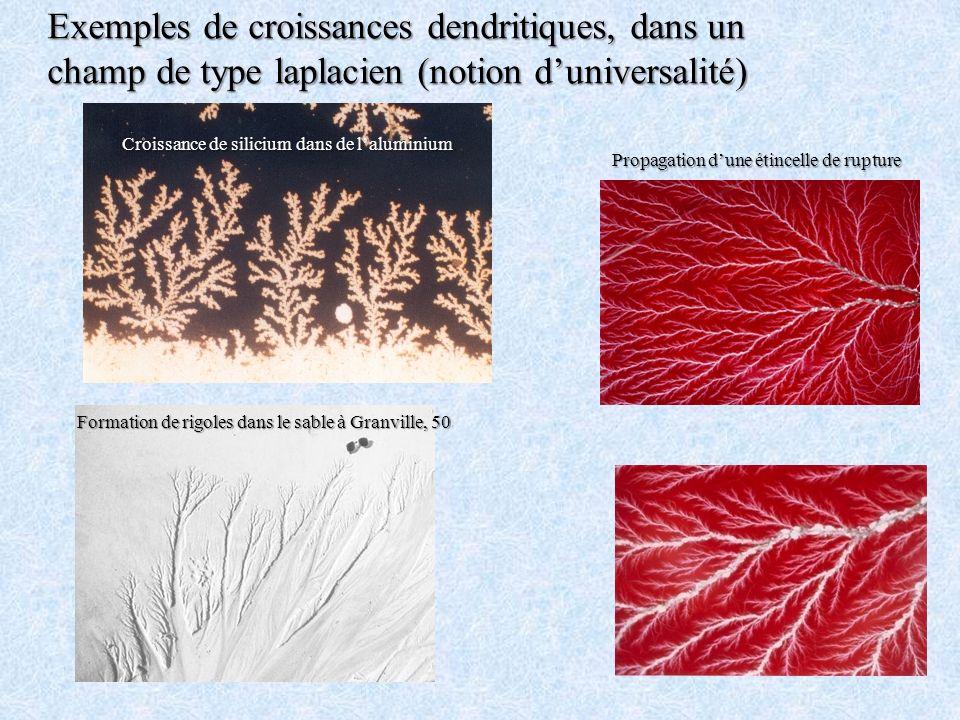 Exemples de croissances dendritiques, dans un champ de type laplacien (notion duniversalité) Croissance de silicium dans de laluminium Propagation dun