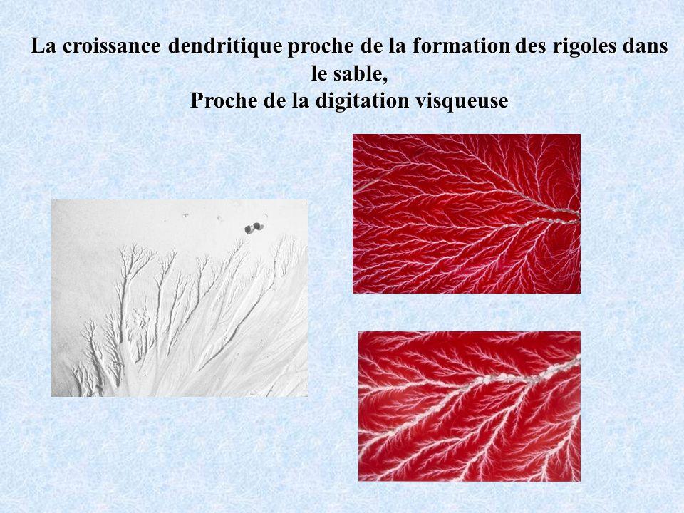 La croissance dendritique proche de la formation des rigoles dans le sable, Proche de la digitation visqueuse