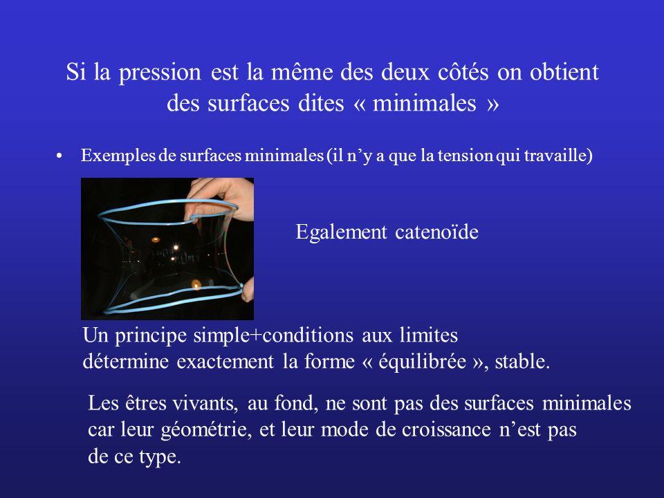Si la pression est la même des deux côtés on obtient des surfaces dites « minimales » Exemples de surfaces minimales (il ny a que la tension qui trava