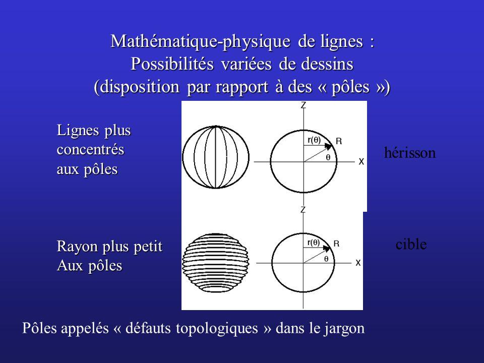 Mathématique-physique de lignes : Possibilités variées de dessins (disposition par rapport à des « pôles ») Lignes plus concentrés aux pôles Rayon plu