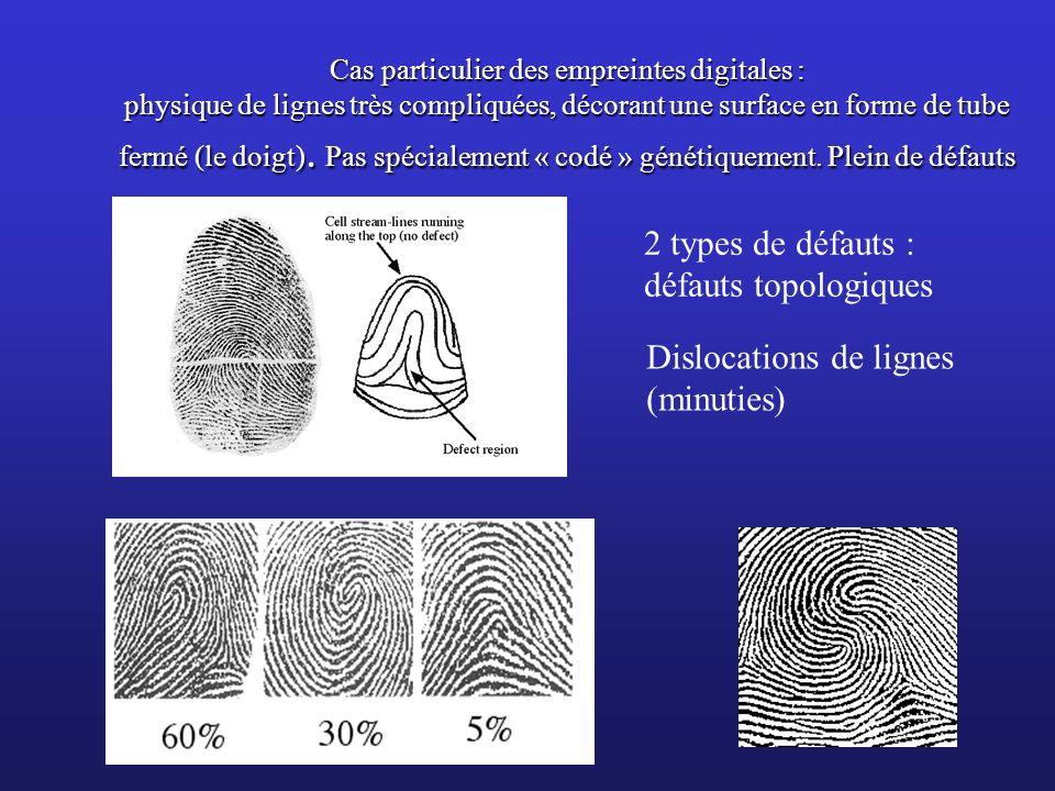 Cas particulier des empreintes digitales : physique de lignes très compliquées, décorant une surface en forme de tube fermé (le doigt). Pas spécialeme