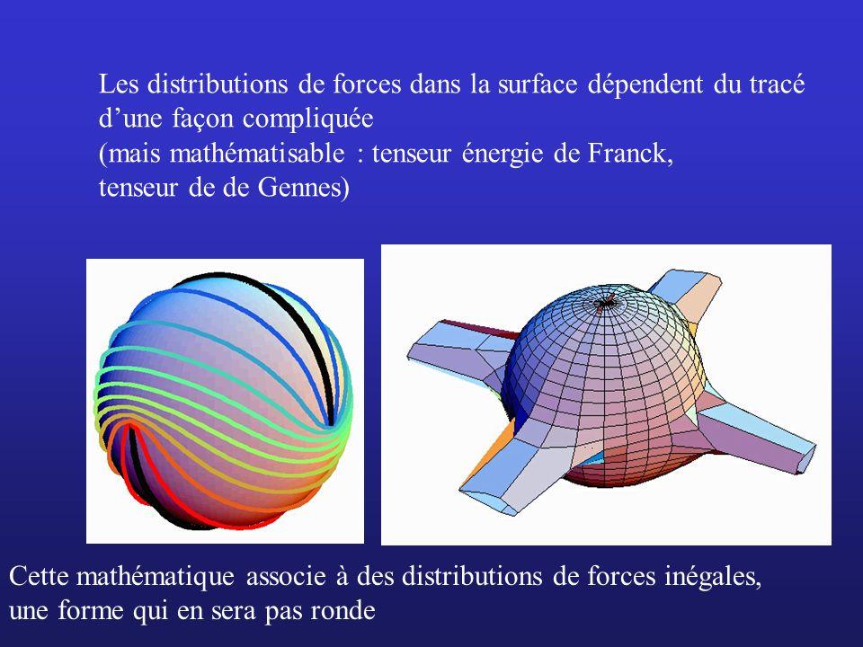 Les distributions de forces dans la surface dépendent du tracé dune façon compliquée (mais mathématisable : tenseur énergie de Franck, tenseur de de G