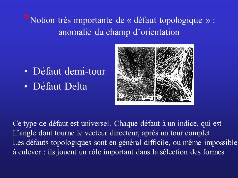 * Notion très importante de « défaut topologique » : anomalie du champ dorientation Défaut demi-tour Défaut Delta Ce type de défaut est universel. Cha