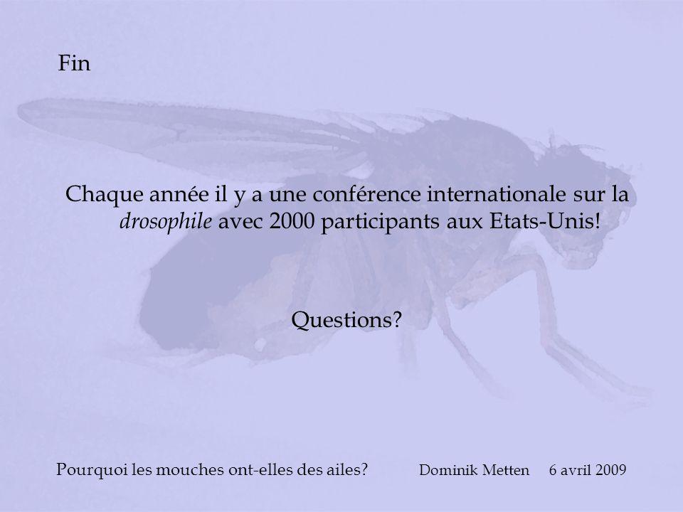 Pourquoi les mouches ont-elles des ailes? Dominik Metten 6 avril 2009 Fin Chaque année il y a une conférence internationale sur la drosophile avec 200