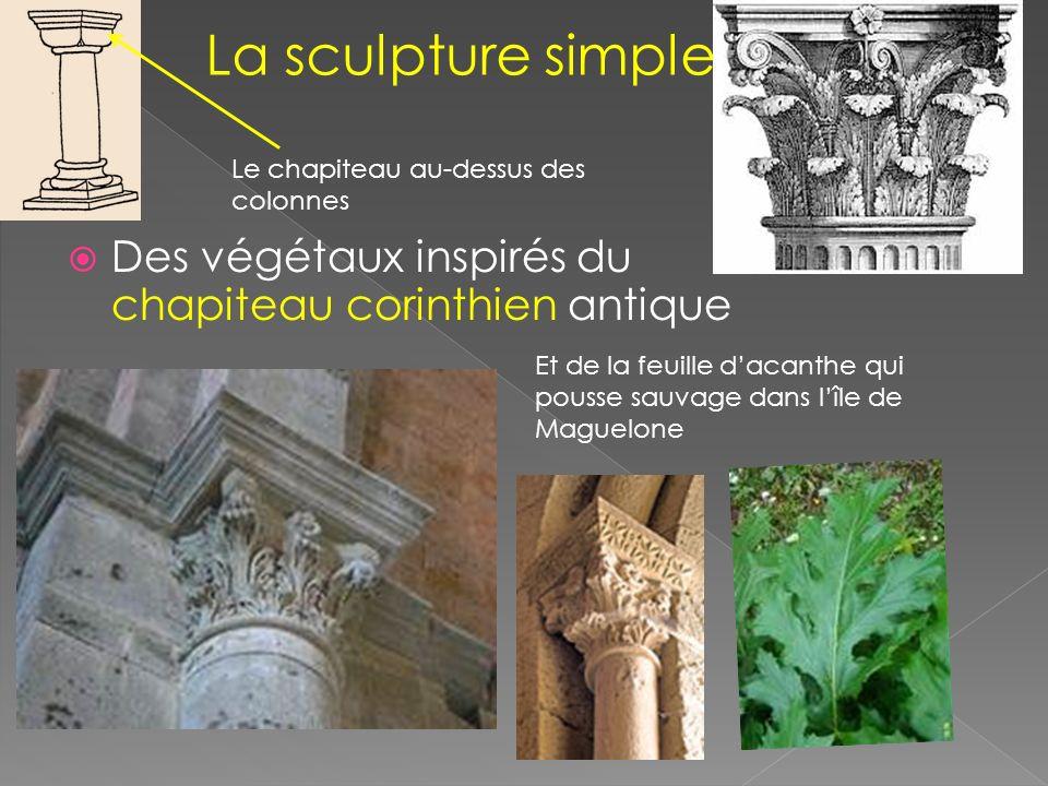 Des végétaux inspirés du chapiteau corinthien antique Et de la feuille dacanthe qui pousse sauvage dans lîle de Maguelone Le chapiteau au-dessus des colonnes