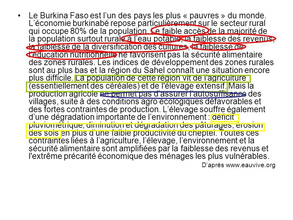 Le Burkina Faso est lun des pays les plus « pauvres » du monde. Léconomie burkinabé repose particulièrement sur le secteur rural qui occupe 80% de la