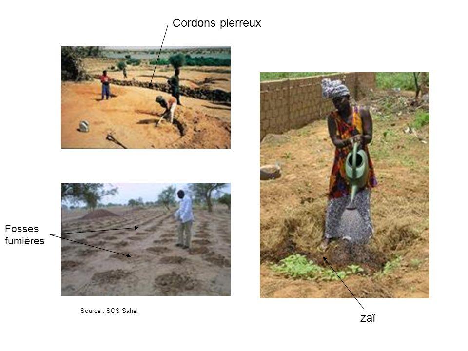Source : SOS Sahel Cordons pierreux zaï Fosses fumières