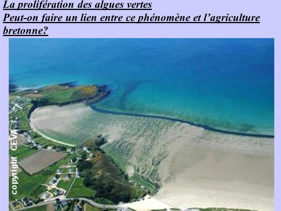 La prolifération des algues vertes Peut-on faire un lien entre ce phénomène et lagriculture bretonne?