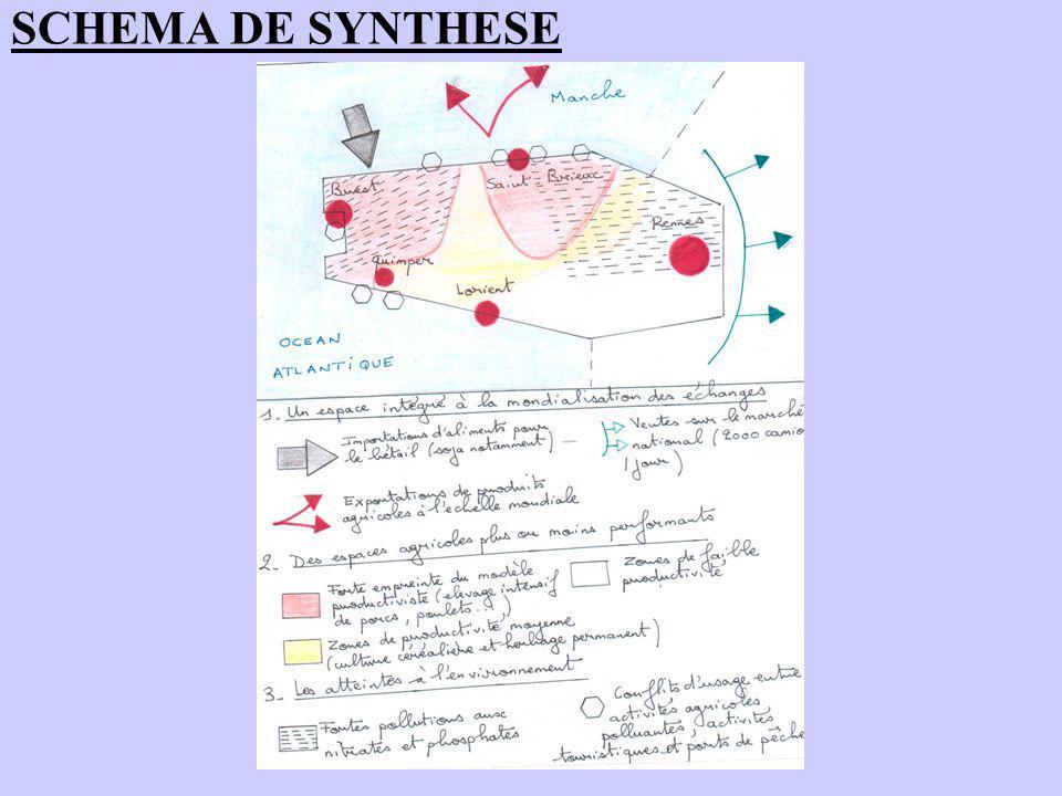SCHEMA DE SYNTHESE