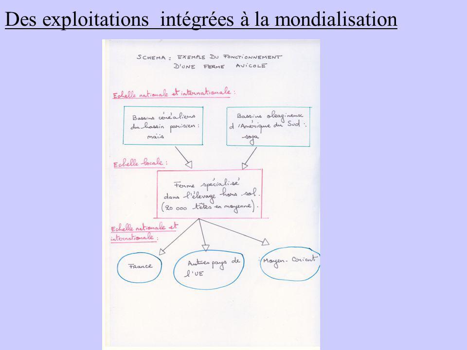 Des exploitations intégrées à la mondialisation