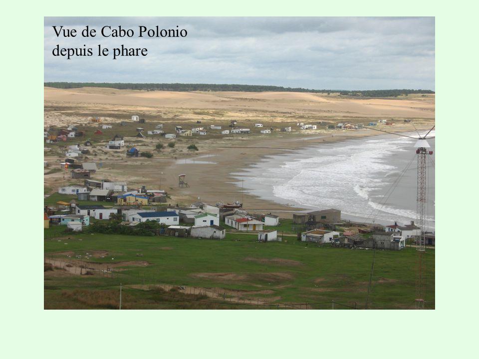 Vue de Cabo Polonio depuis le phare